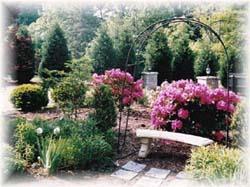 Albemarle Inn - Gardens