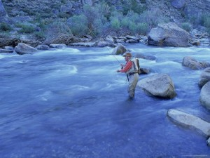 Fly-Fishing-West-Walker-River-CA-Posters