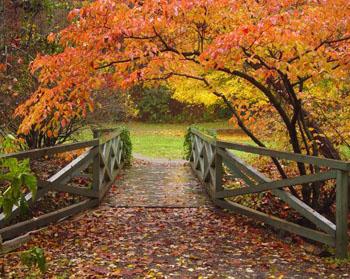asheville_gardens_2507a_jpg_original