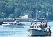 boats(1)