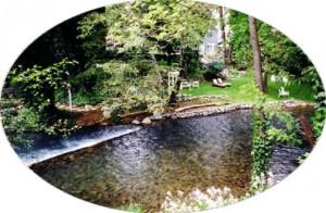 creek1 copy