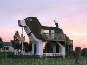 dogpaarkatsunset