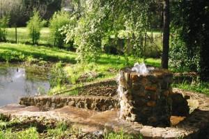 oasiswaterfountain