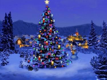 christmas tree decoration - Colorado Christmas
