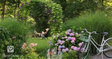 Bed and breakfast gardens